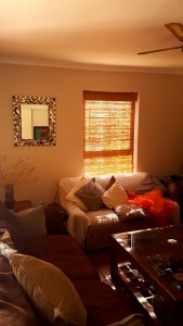 lounge bamboo roller blinds