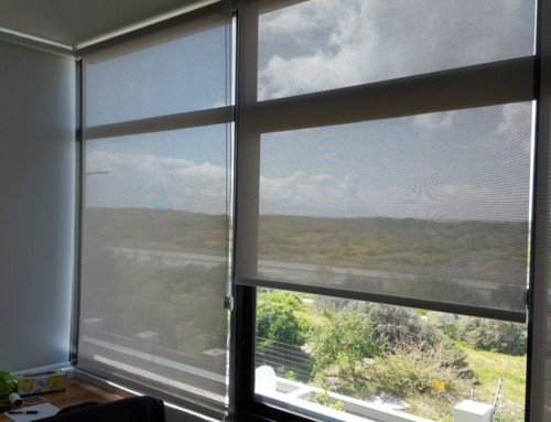 Sunscreen Roller Blinds in time for Summer!