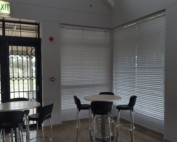 Office Blinds Cape Town Venetian Blinds TLC Blinds